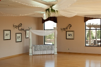 Dance Floor Ceiling Drapery - Idea Gallery - Tulle & light ceiling decor for rent